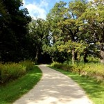The Fall and Winter Walking Path Ahead…