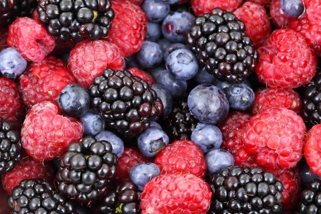JustLoveWalking-berries